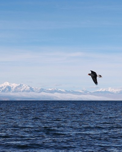 Isla del Sol, Lago Titicaca (Bolivia) / Island of the sun, Lake Titicaca (Bolivia)