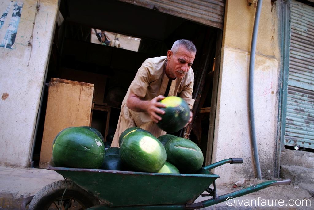 vendedor sandías en aswan