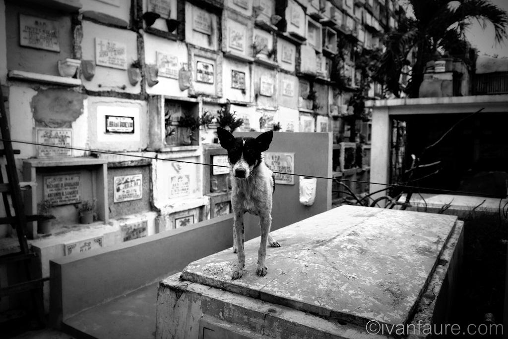 vida cementerios filipinas